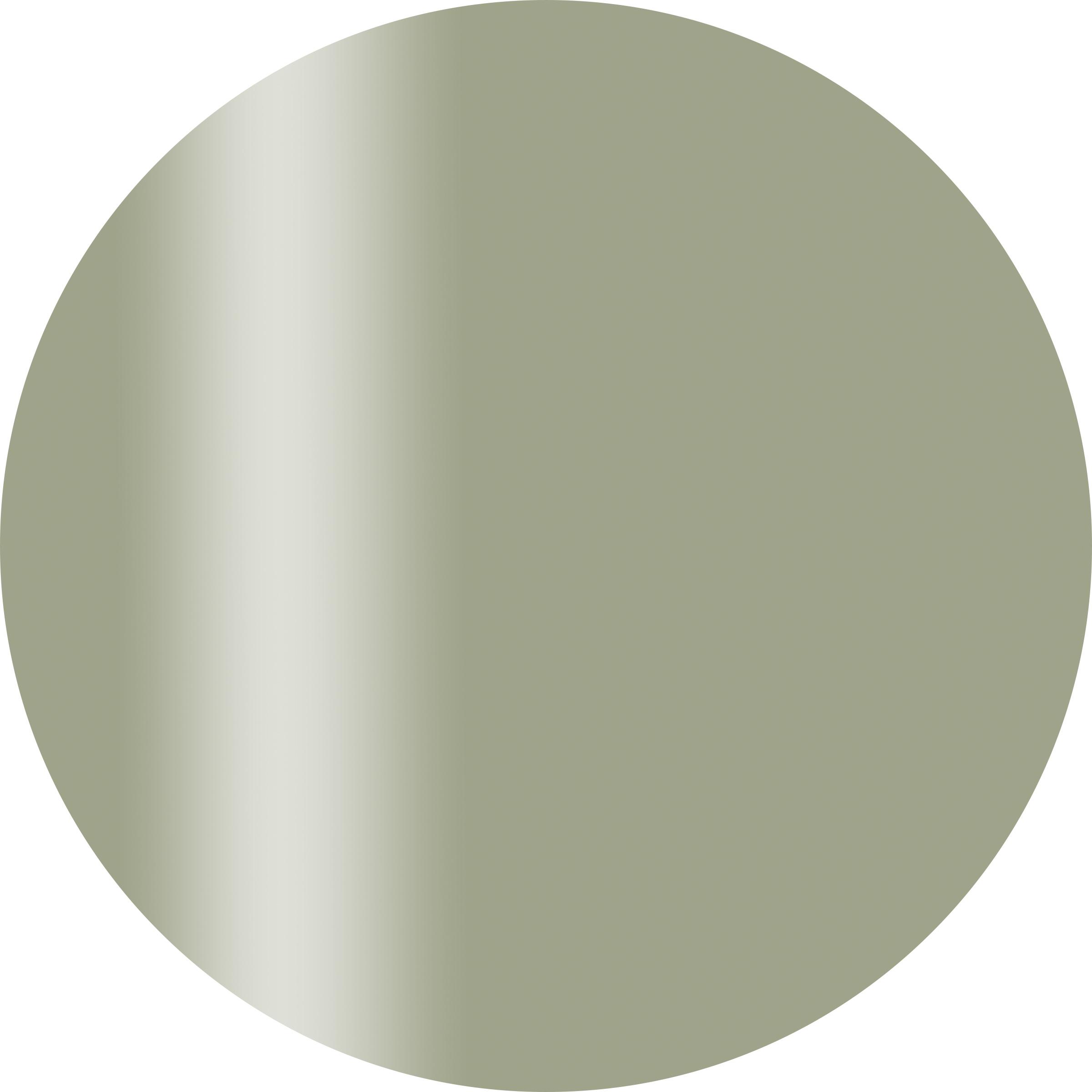 CGM08GR カラーカルジェル プラス グレイッシュリーフ 2.5g
